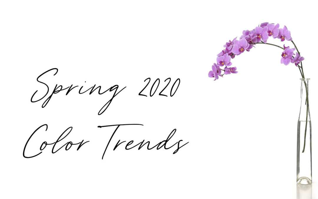 Spring 2020 Color Trends Cover